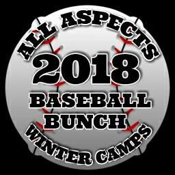 2018 Baseball Bunch